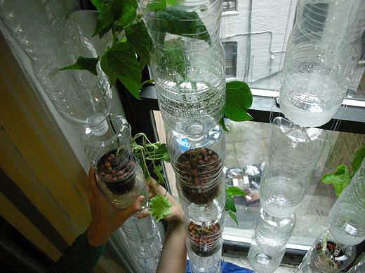 A New Kind Of Garden Civil Eats