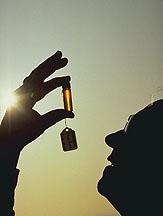 image_USDA_vial in the sun