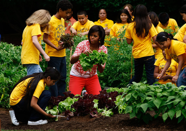 White House Garden Brought Attention Now Teacher Says School Gardens Need Support Civil Eats