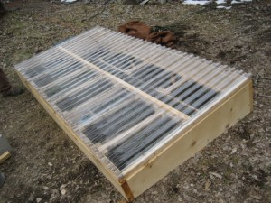 Cold Frame Seed Starting