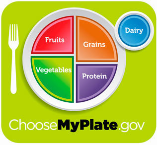 U. S. Retires the food pyramid, introduces simpler 'myplate' | time. Com.