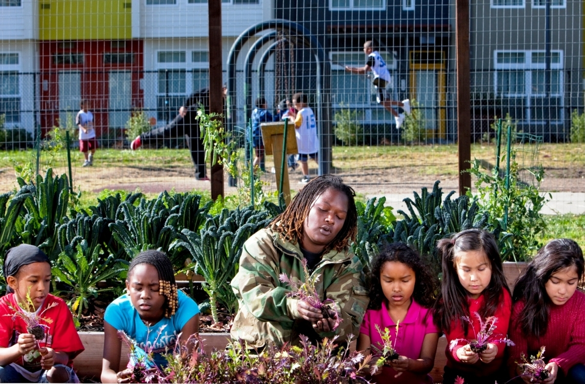 Veterans Infuse New Life Into Agriculture