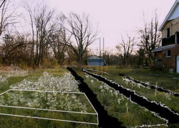 Detroit Garden