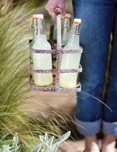 Ginger-Ale-700