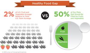 Healthy-Food-Gap-Civil-Eats