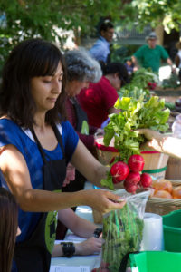 WEB The Stop Good Food Market - cr Matt O'Sullivan