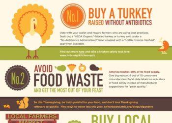 ThanksgivingTips_R7-thumb-500x646-13540