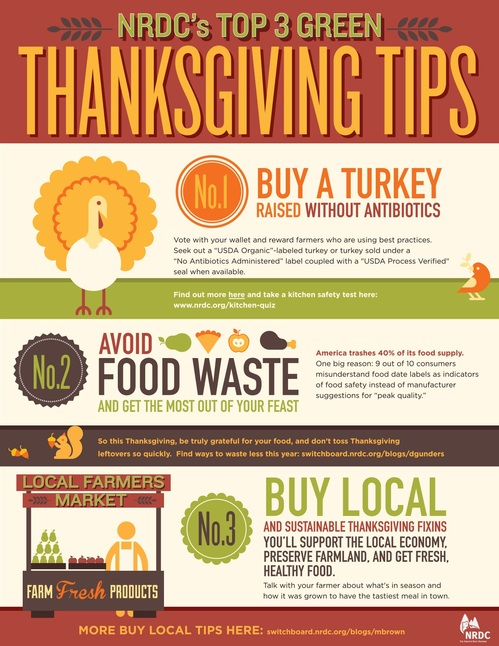 ThanksgivingTips_R7-thumb-500x646-13540
