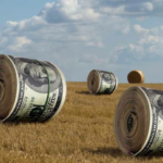 money_haybales