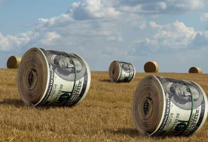 Betting the farm will investor led land grabs mean more Lenders for land purchase