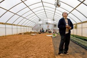 jefferson, herr, hmong, greenhouse,