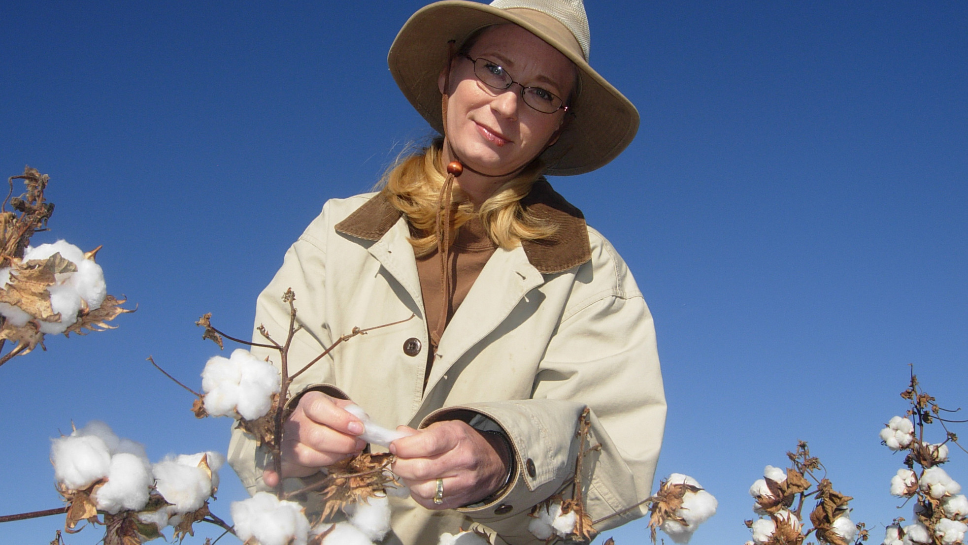 seed breeder