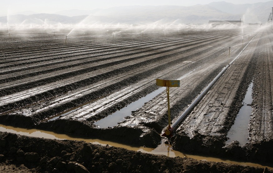 watering a farm field with sprinklers