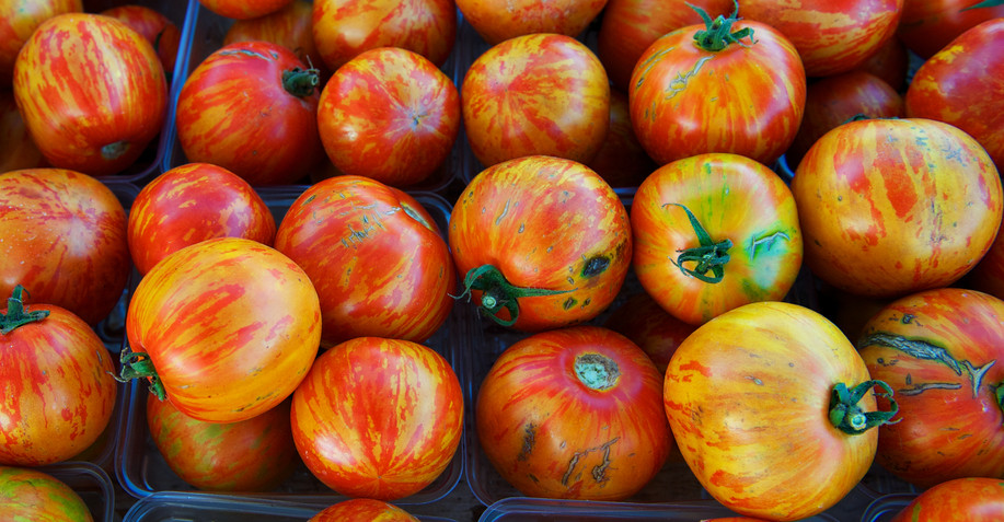 The Great Tomato Debate Heirlooms Hybrids Or Gmos Civil Eats