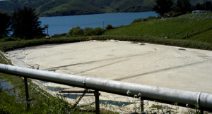 values-in-action-methane-digester-pond__large