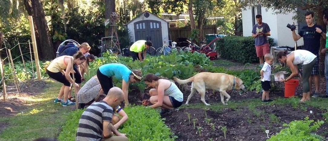 Fleet Farming Gardening