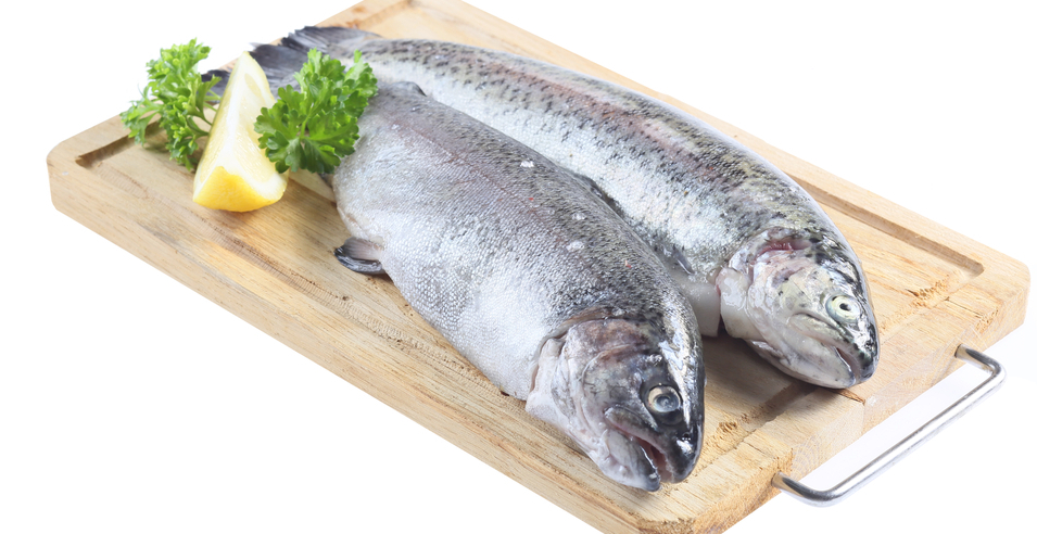 All the news that 39 s fit to eat soda 39 s aging power for Tetracycline for fish