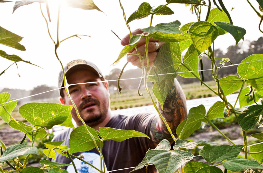 Sean Brock. Credit Peter Frank Edwards from HERITAGE. Copyright (c) 2014 Artisan Books