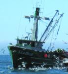 purse-seiners-off-Monterey-bay_Geoff-Shester