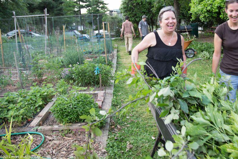 An Urban Farming Renaissance In Our Nation S Capital