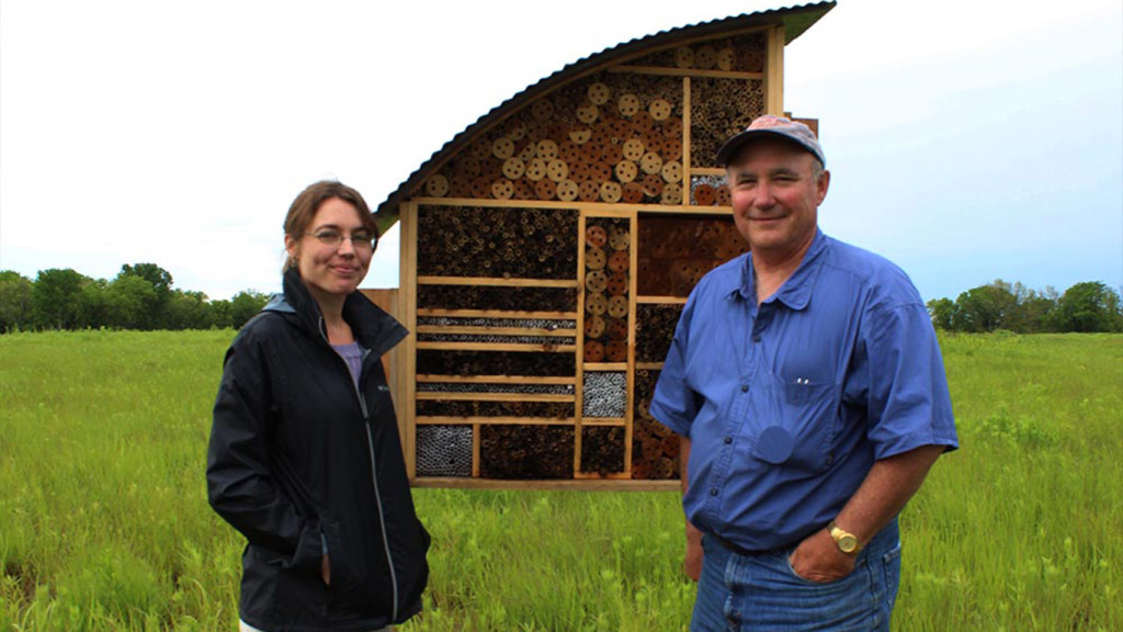 063015_Bees_hotel_research