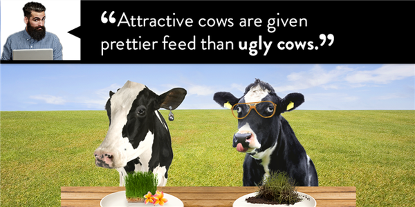 ugly_cows
