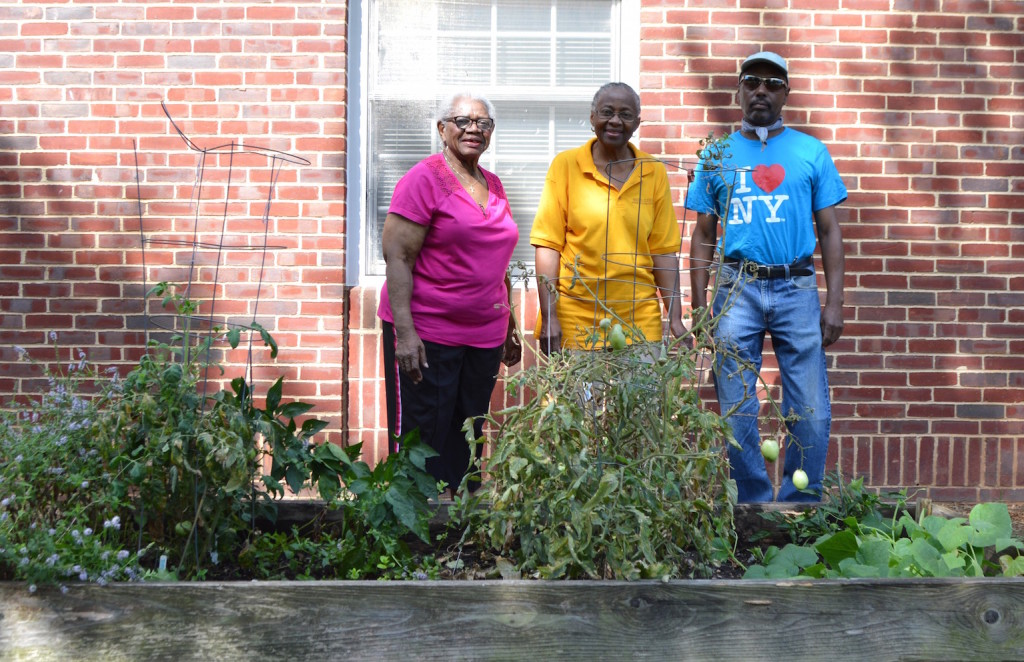 Theresa Mozie, Eleese Onami, and Sam McCullough at the Model Cities Wellness Center garden. Photo by Emily Matras.