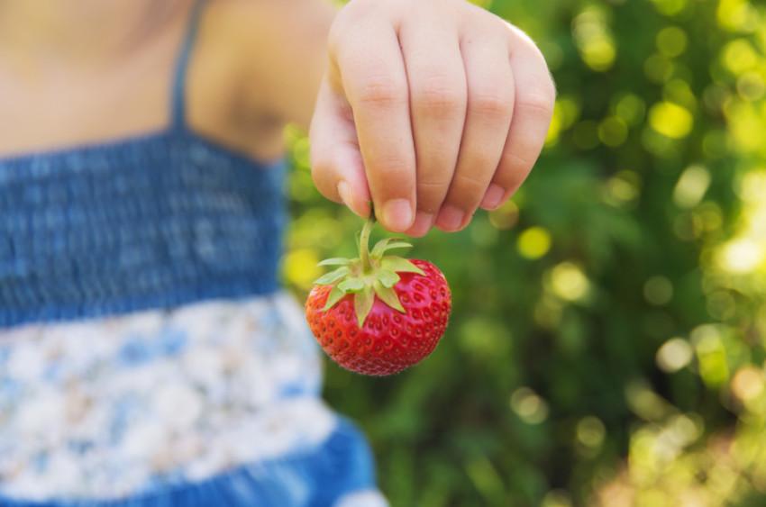 child_strawberry