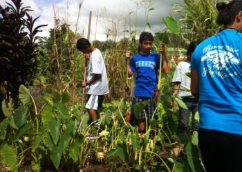 Youth gardeners Hawaii