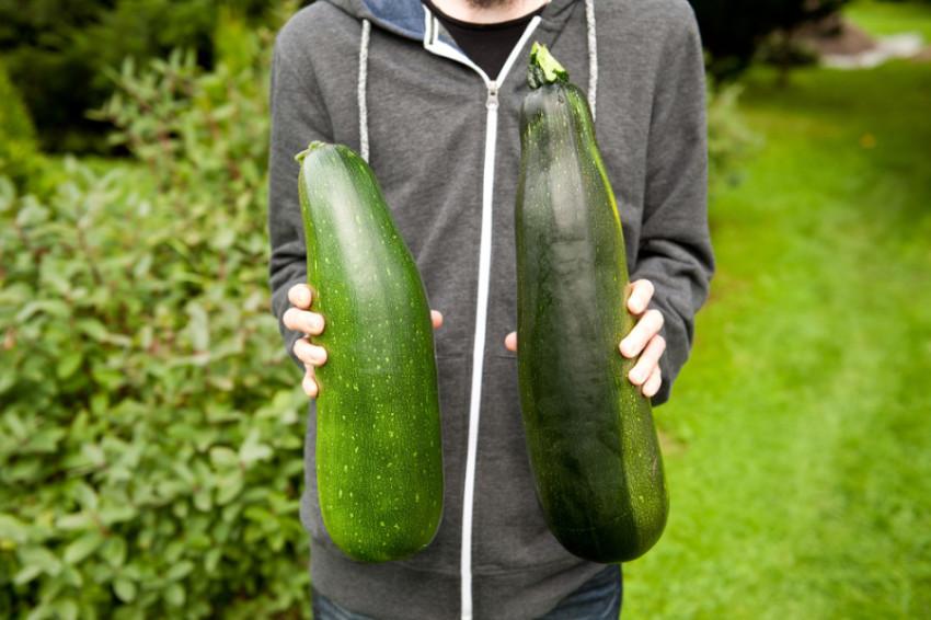 large zucchini pharmaceuticals