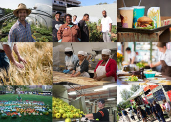 Most Read Food Policy News 2015