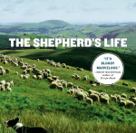 The Shepherd's Life: Modern Dispatches from an Ancient Landscape Book Cover