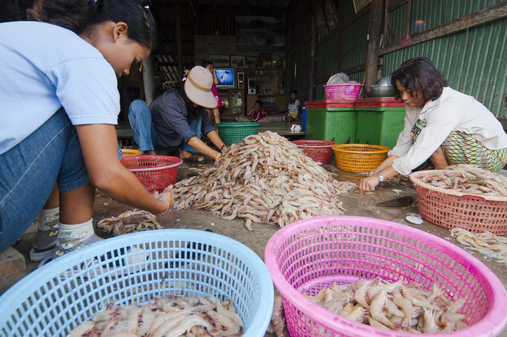 Thailand Shrimp Workers