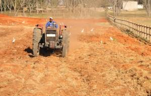 Black Farmer on Tractor