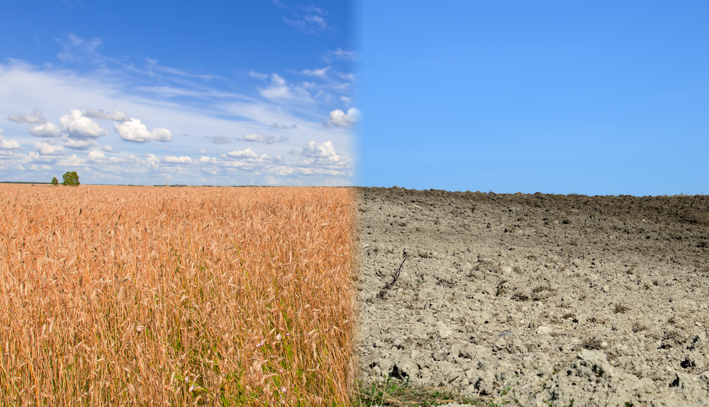 climate change agriculture drought
