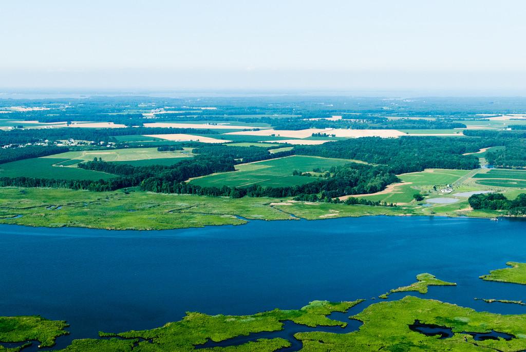 Chesapeake Bay Farmland