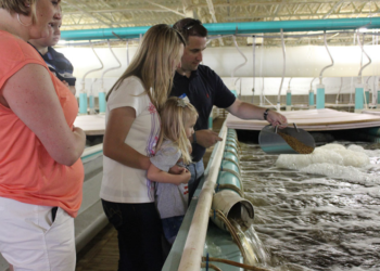 Family at Quixotic Fish Farm