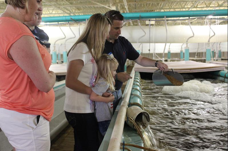 Family at Quixotic Fish Farm