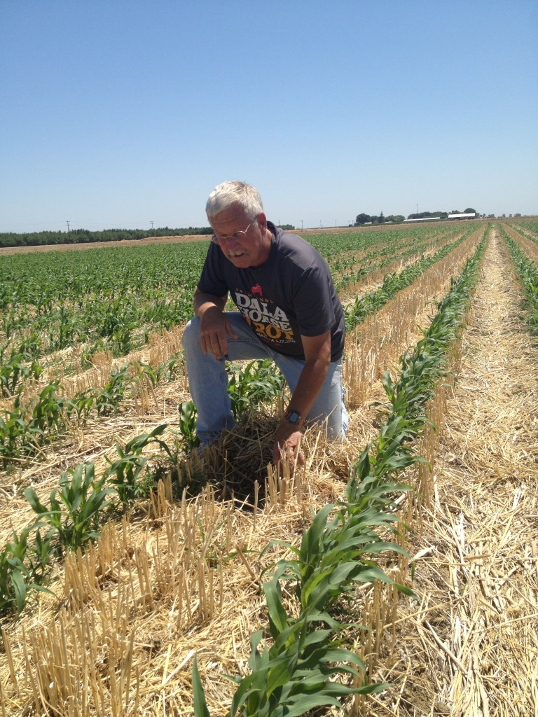 Farmer Jeff Mitchell in Field with Conservation Tillage and Cover Crops