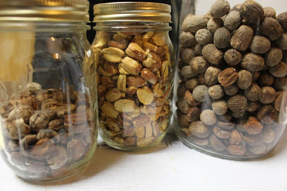 the man who hopes to turn acorns into gold | civil eats