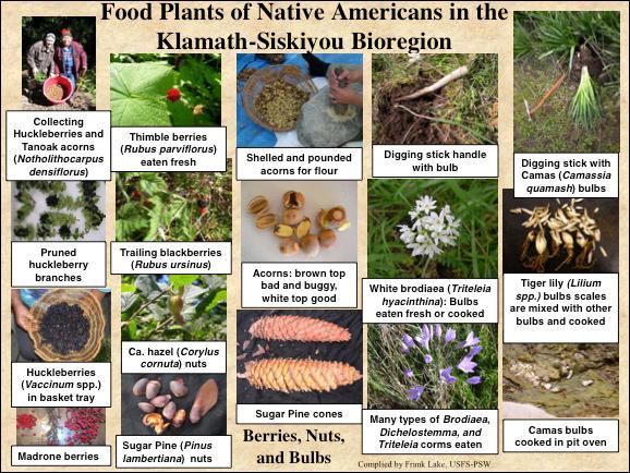 KB Cultural Foods (1)