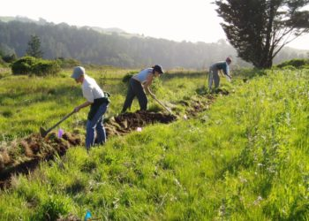 Permaculture Farm and Workers