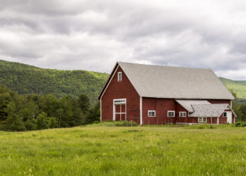 Barn in Green Fields
