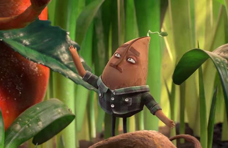 Clif Bar Mr. Seed