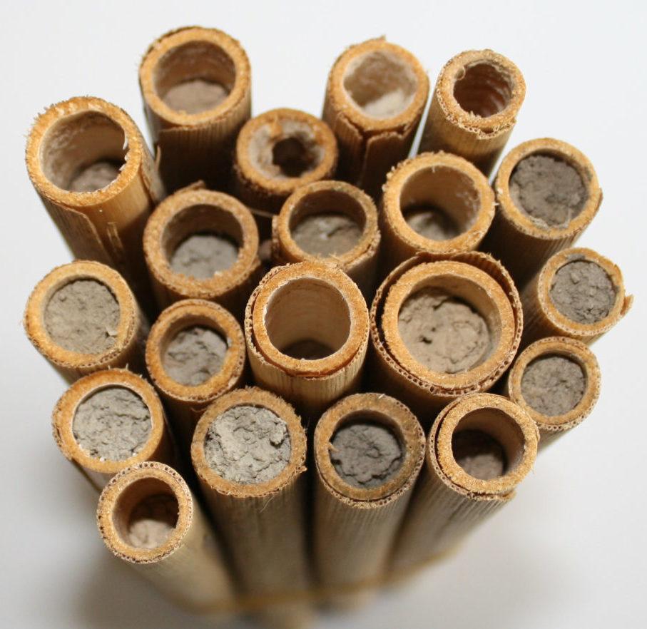 nesting tubes for Anna