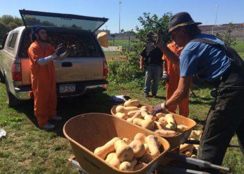 PSS prison farm squash toss