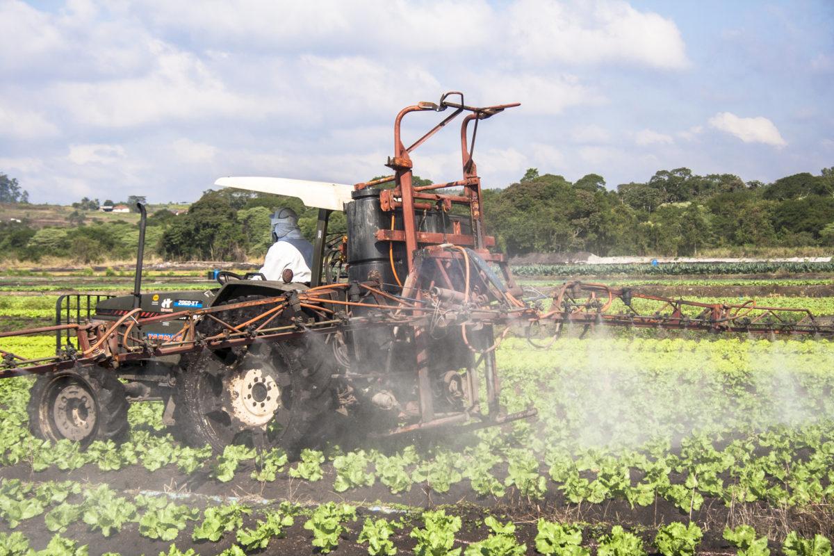 pesticide buffer zones
