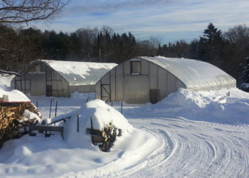 winter farming
