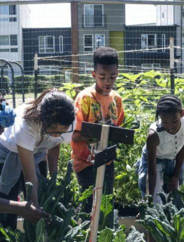 acta non verba urban farm