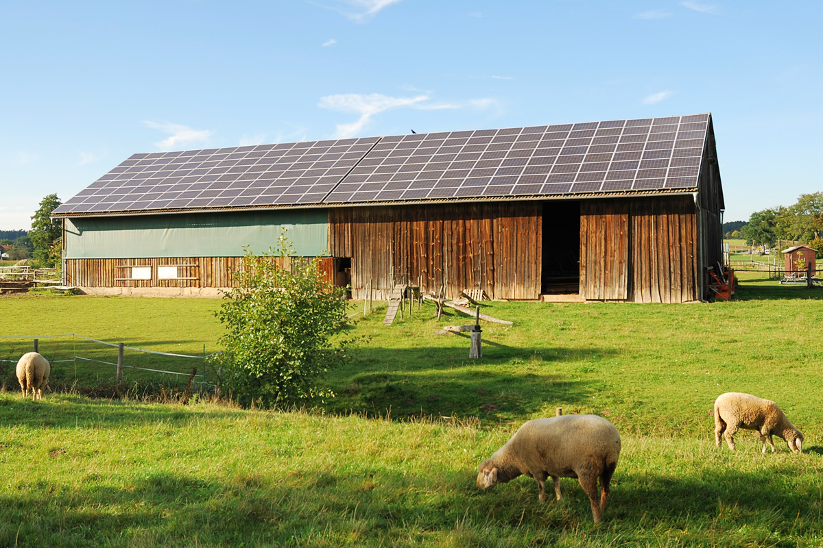 Solar Farming Brings Benefits And Concerns To The Land